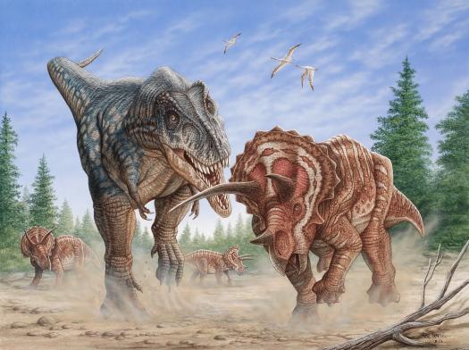 T-rex vs. Triceratops (s)
